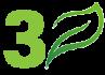 leaf-no3